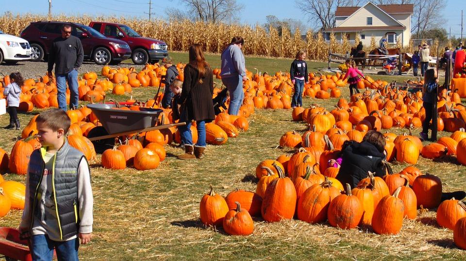 Halloween in familie: activitati și distractii pentru tine si cei dragi!