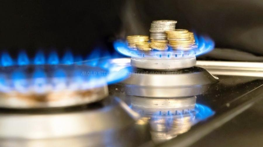 Ministrul Economiei anunta ca pretul gazelor platit de populatie va fi mai mic dupa liberalizare