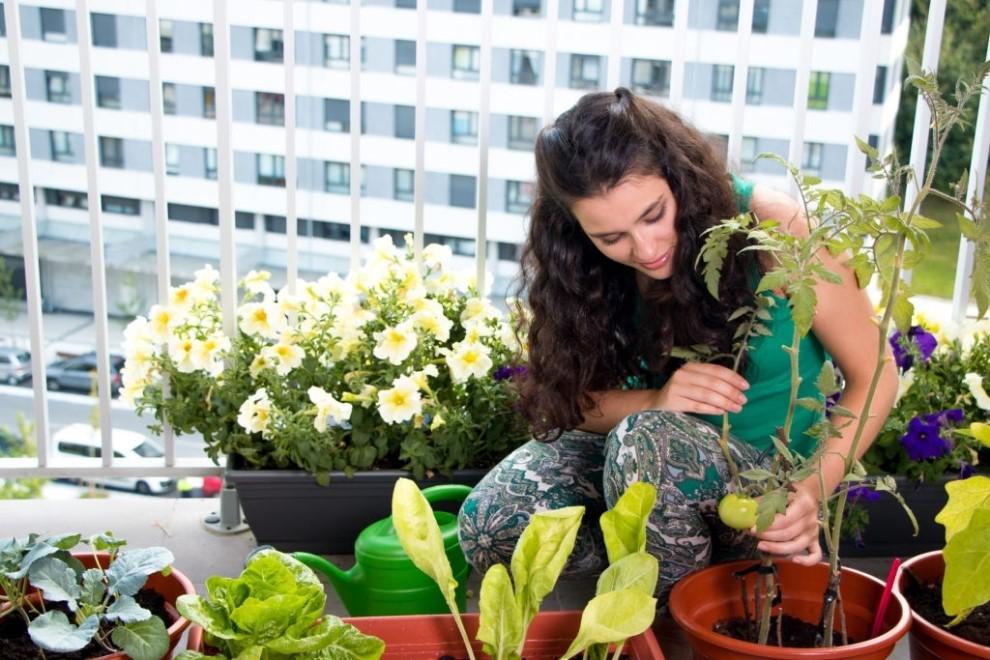 Idei practice pentru amenajarea terasei cu piese de mobilier adecvate si cu flori multicolore