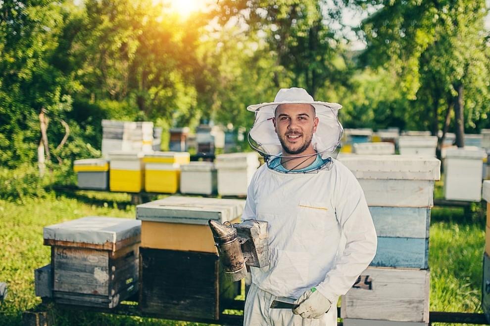 Ce greseli fac apicultorii care se afla la inceput de drum?